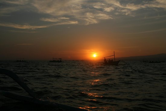 Cleopatra Beach Bungalows : Terug van dolfijn spotting