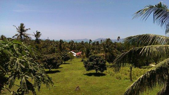 Wazzah Resort: Vue de notre chambre