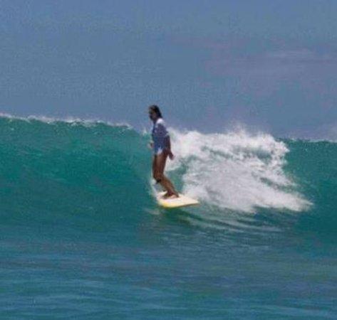 Kristy Murphy's Siren Surf Adventures: Waikiki Cruising