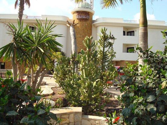 SBH Crystal Beach Hotel & Suites: Wejście