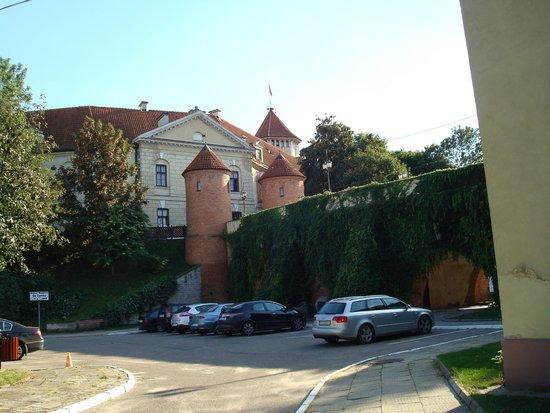 Dom Polonii : Zamek