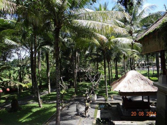 The Ubud Village Resort & Spa : vista del giardino antistante la piscina dalla reception
