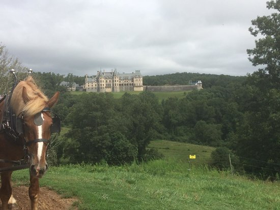 The Inn on Biltmore Estate: View from carriage ride.