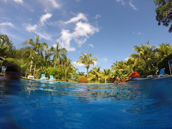 Mal Pais Surf Camp & Resort: Great pool at the camp!