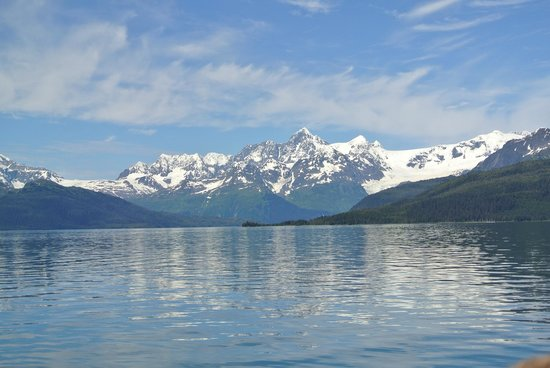 26 Glacier Cruise by Phillips Cruises and Tours: Pure Beauty