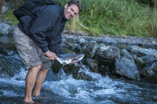 Sitka International Hostel: Me catching salmon by hand from a nearby stream during the spawning season