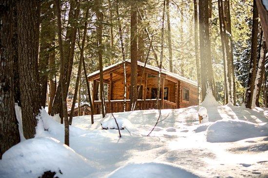 Wildman Adventure Resort: Cozy Cabin
