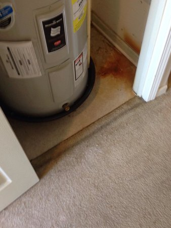 True Blue Golf Resort : Mold and nasty stain on carpet what a dump