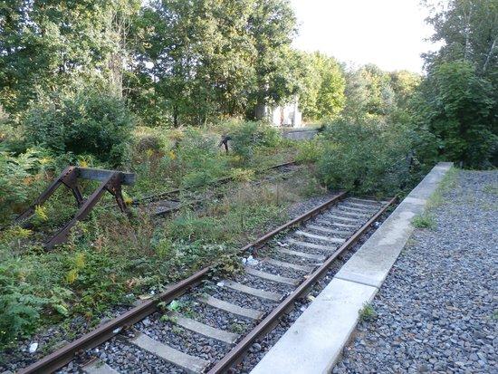 Gleis 17, Grunewald: Gleis 17