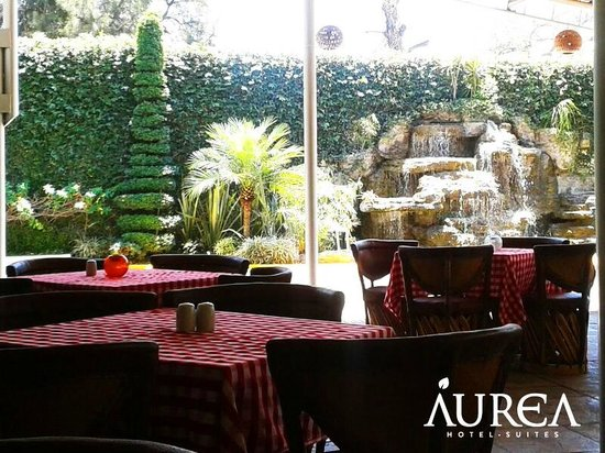 Aurea Hotel and Suites: Terraza