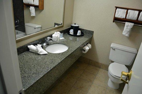 Hampton Inn Lake Havasu City : Schönes Zimmer mit geräumigem Bad