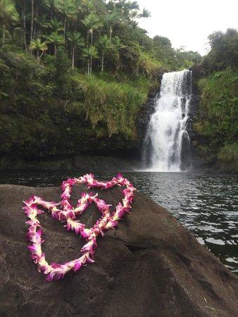 The Inn at Kulaniapia Falls : Kulaniapia Falls
