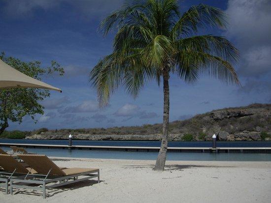 Santa Barbara Beach & Golf Resort, Curacao : Perfect Beach Day (Aug 31)