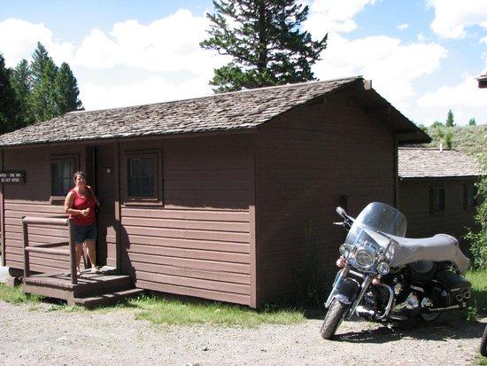Roosevelt Lodge Cabins : Roosevelt Cabin