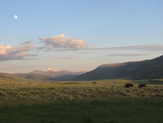 Roosevelt Lodge Cabins : Sunset at Lamar Valley with Full Moon