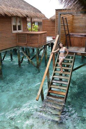 Meeru Island Resort & Spa : steps to the ocean
