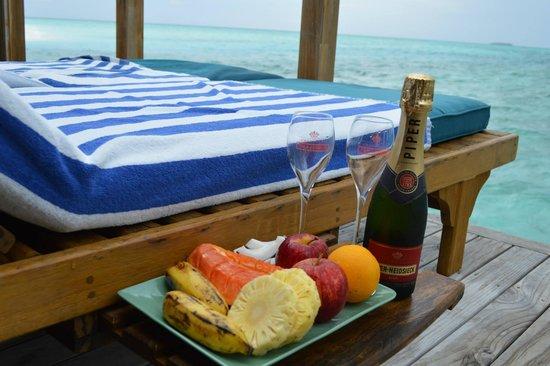 Meeru Island Resort & Spa : honeymoon greetings
