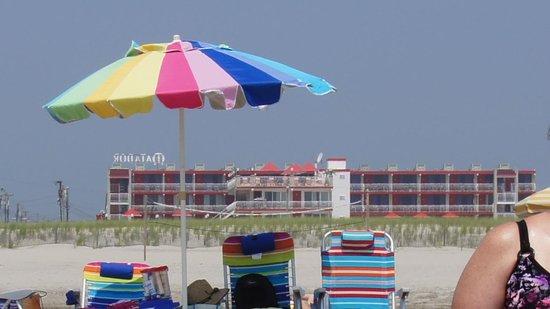 Matador Oceanfront Resort: Right on the beach!