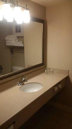 Holiday Inn Burlington Hotel & Conference Centre : bathroom