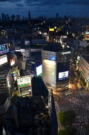 Shibuya Excel Hotel Tokyu : View from room 2301