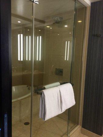 ARIA Resort & Casino: shower