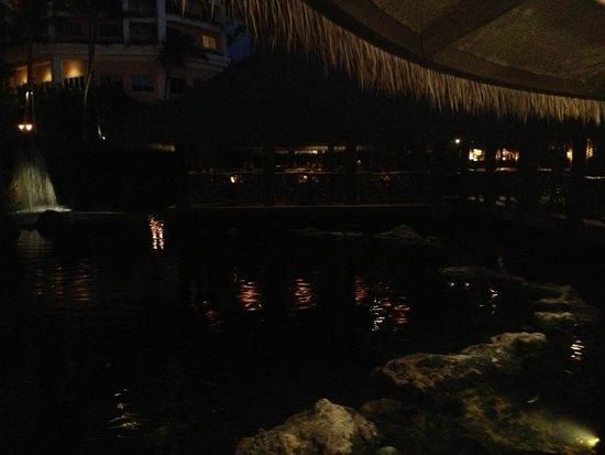 Humuhumunukunukuapua'a: view of lagoon by night