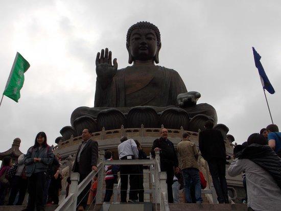 Lantau Island : The Big Buddha