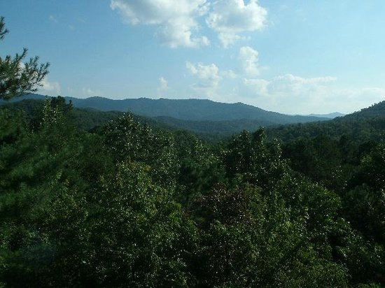 Laurel Mountain Cabins : The view from the porch
