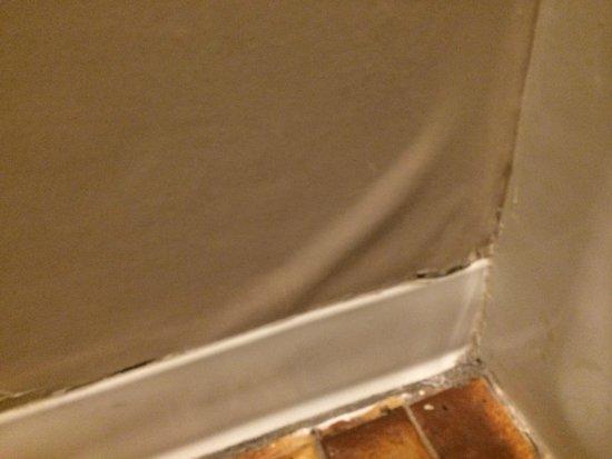 Bradford Inn & Suites: peeling wall paper