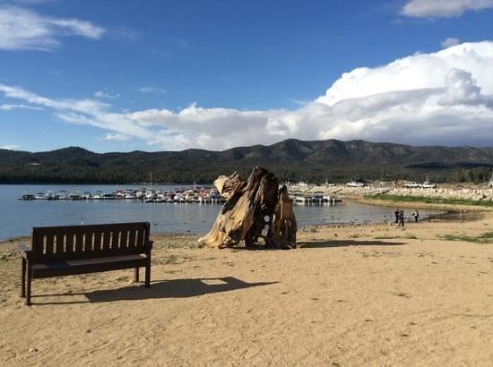 Marina Resort: View Of Lake