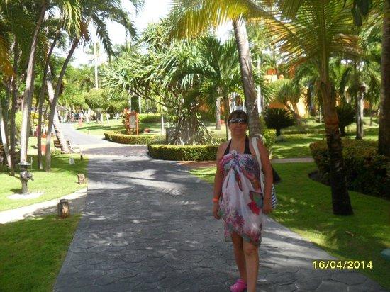 Iberostar  Bávaro Suites: hermosos y bien cuidados jardines