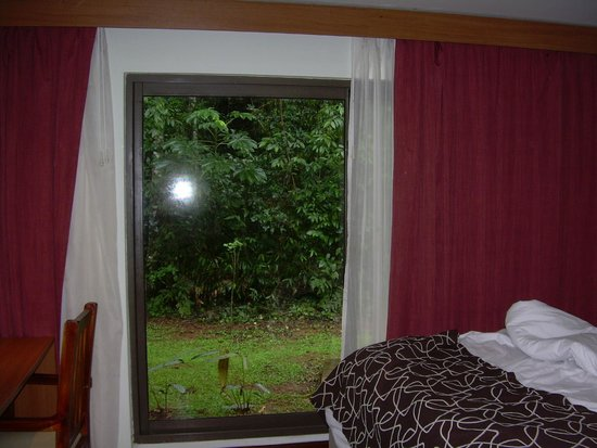 Yvy Hotel de Selva : Las habitaciones son parte de cabañas, rodeadas de vegetación