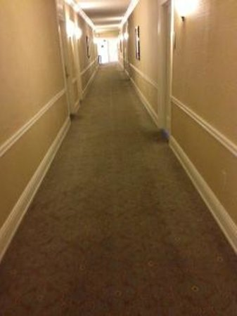 The Chase Park Plaza: worn carpet in hallway and doorways