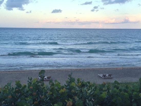 Courtyard Hutchinson Island Oceanside/Jensen Beach : View from balcony
