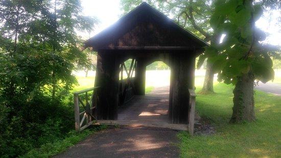Evangola State Park: Old Wooden Bridge
