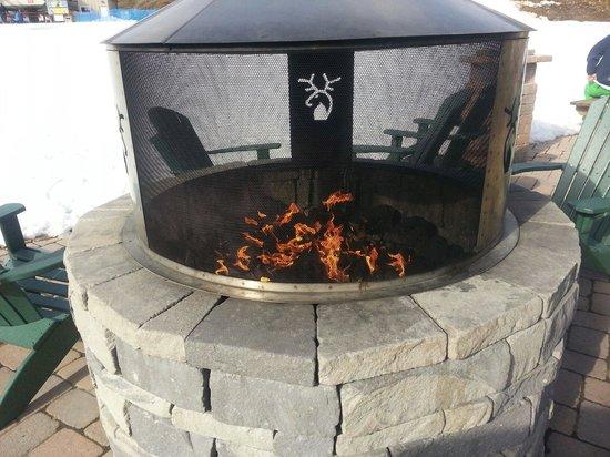 Whitetail Mountain Resort: Fireplace at Whitetail