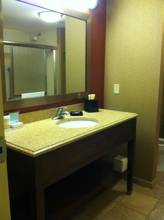 Hampton Inn & Suites St. Louis/South I-55 : Bathroom