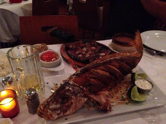 Little Brazil: Excellent restaurant excellent food. Best read snapper in town