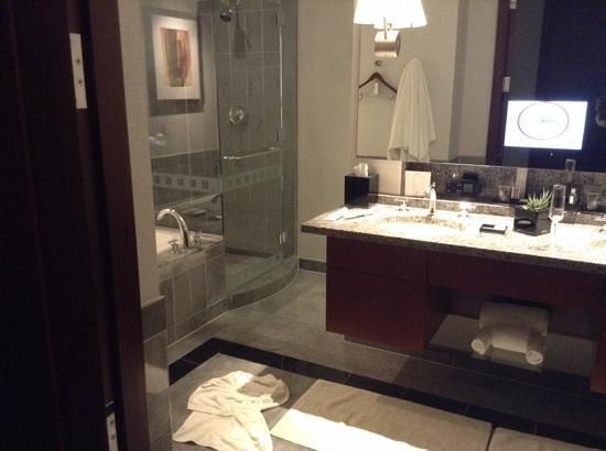 The Ritz-Carlton, Charlotte: Bathroom
