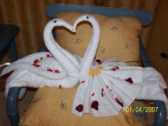 Iberostar Tucan Hotel: Towel art in room.