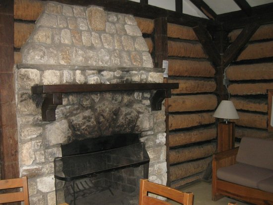 Myakka River State Park: Cabin fireplace has carbon monoxide alarms for safety