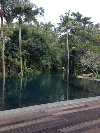 Kayumanis Ubud Private Villa & Spa : Infinity Pool