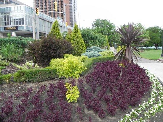 Dieppe Gardens : beautiful flowers