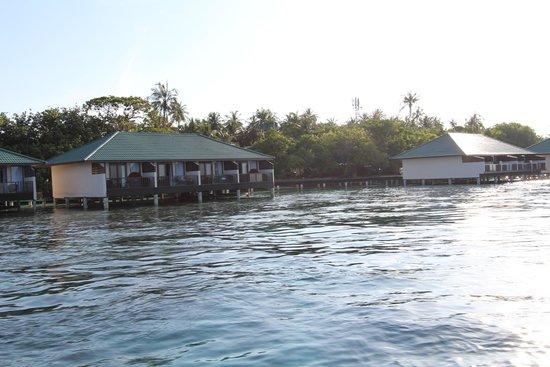 Embudu Village : 水上コテージ