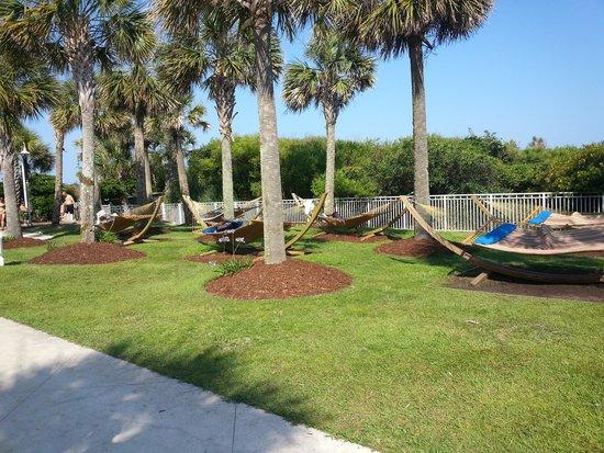 Myrtle Beach Marriott Resort Spa At Grande Dunes Hammocks