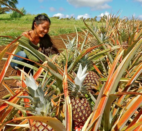 Kohala Grown Farm Tours