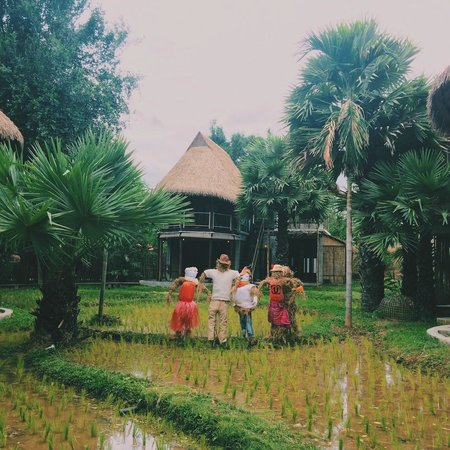 La a natu Bed & Bakery: rice field
