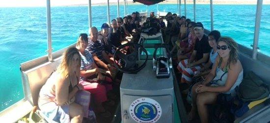 Ningaloo Ecology Cruises Glass Bottom Boat: Great day out snorkeling on Nigaloo Reef