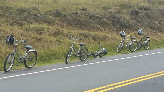 Maui Easy Riders : Quick break to enjoy the views