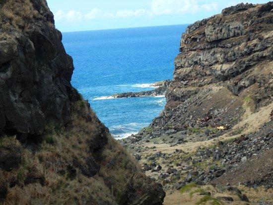 Paia, HI: Hana road trip